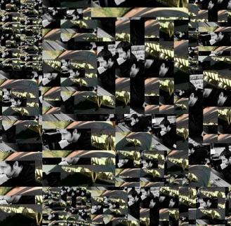 8632B7F3-F8B8-4FD1-9E00-105B50BDA57C