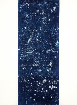 Dragon (I), cyanotype on paper, 30x22, 2019
