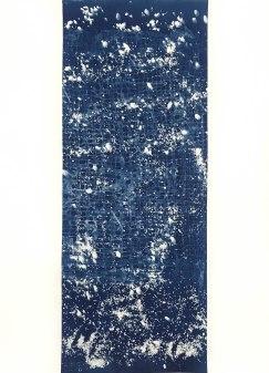 Dragon (II), cyanotype on paper, 30x22, 2019