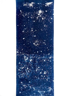 Dragon (III), cyanotype on paper, 30x22, 2019