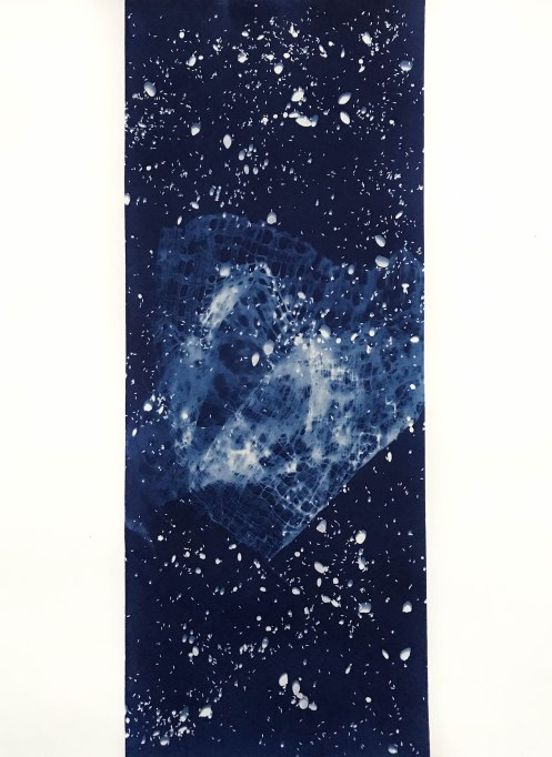 Dragon (VI), cyanotype on paper, 30x22, 2019
