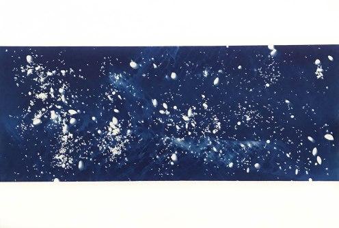 Dragon (VII), cyanotype on paper, 15x22, 2019