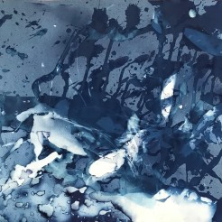 "Geyserville Burn (II), cyanotype on paper, 16x20"", February 2020"